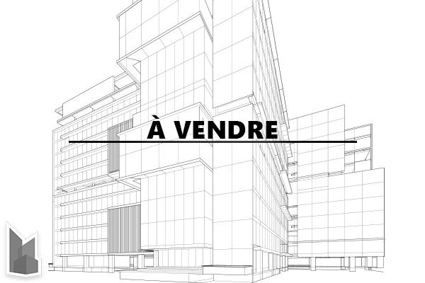 Bâtiment industriel à vendre LaSalle - 480p